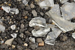 Pieces of broken glass on wet asphalt Stock Image