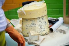 Pieces of cheese with blue mold and hands of seller, market counter. Gastronomic dainty products on market counter, real. Cut pieces of cheese with blue mold and stock photos