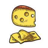 Pieces of Cheese. Color vintage engraved vector Stock Photos