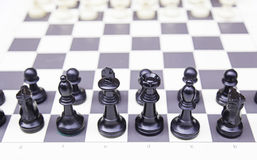 Pieces in a chess board Stock Photos