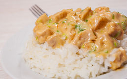 Pieces of chicken fillet and cheese sauce with rice Royalty Free Stock Photos
