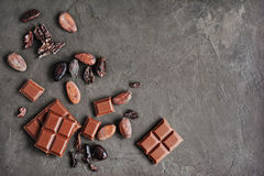 Pieces of chocolate bar and cocoa beans Stock Image