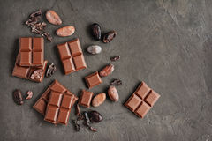 Pieces of chocolate bar and cocoa beans Stock Photos