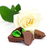Pieces of chocolate bar with white rose Royalty Free Stock Images