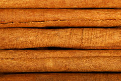 Pieces of cinnamon, close up. Stock Images