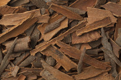 Pieces of cinnamon Royalty Free Stock Photography