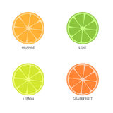 Pieces of citrus fruits Royalty Free Stock Photo