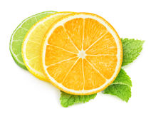 Pieces of citrus fruits Stock Photos