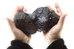 Pieces of coal in hand isolated on white background Royalty Free Stock Photo