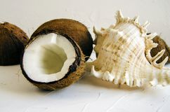 Pieces of coconut on white background, flat lay, top view stock photos