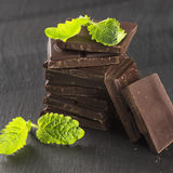 Pieces of dark chocolate and mint.  Stock Photos
