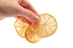 Pieces of dried lemon in hand Royalty Free Stock Photo