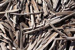 Pieces of driftwood Stock Photography
