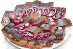 Pieces of fat herring Royalty Free Stock Photo