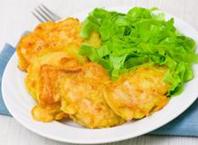 Pieces of fish fillets in batter with salad Stock Photography
