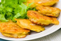 Pieces of fish fillets in batter with salad Royalty Free Stock Photography