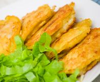 Pieces of fish fillets in batter with salad Stock Image