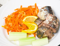 Pieces of fish with vegetables Royalty Free Stock Image