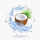 Pieces of fresh coconut with leaves in water splash Realistic vector illustration Royalty Free Stock Photo