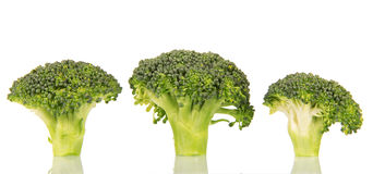 Pieces  fresh green broccoli isolated on white background. Pieces of fresh green broccoli isolated on white background Royalty Free Stock Photo