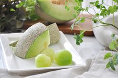 Pieces of Fresh Green Melon Serve on White Plate Royalty Free Stock Photos