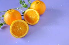 Pieces of Fresh Navel Orange on Purple Background Royalty Free Stock Photography