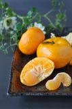 Pieces of Fresh Orange Stock Images