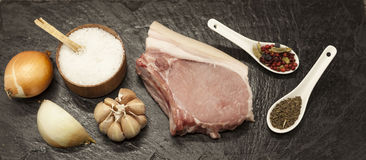 Pieces of fresh raw  pork  onion, garlic, spices, salt on the stone plate.  Royalty Free Stock Photos