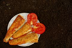 Fried fish on a white plate with tomatoes on black earth Royalty Free Stock Image