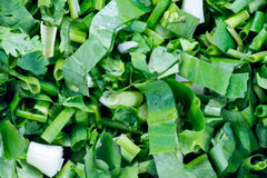 Pieces of green vegetables green onions on ground Royalty Free Stock Images