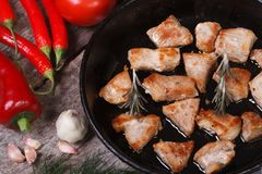 Pieces of grilled meat in a pan close-up. Royalty Free Stock Photography