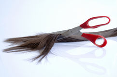 Pieces of hair cut with red scissors Stock Images