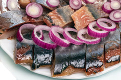 Pieces of herring with onions Royalty Free Stock Images