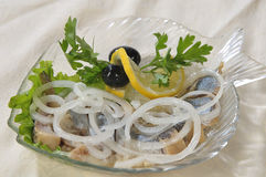 Pieces of herring under a bow in oil Stock Photography