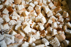 Pieces of holly bread Royalty Free Stock Images