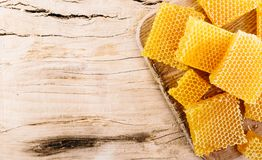 Pieces of honeycomb with honey Stock Image