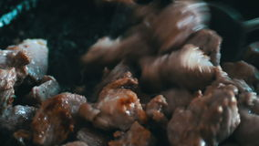 Pieces of meat with blood and spices are fried in a pan stock footage