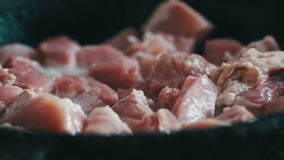 Pieces of meat with blood and spices are fried in a pan stock video