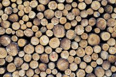Free Pieces Of Wood After Cutting Royalty Free Stock Image - 144447986
