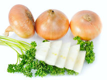 Pieces onions with parsley Stock Photography