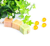 Pieces of organic soap with plant Royalty Free Stock Images