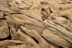 Pieces of ornamental dried wood Royalty Free Stock Photos