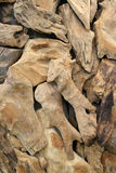 Pieces of ornamental dried wood Royalty Free Stock Image