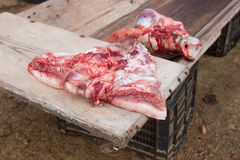 Pieces of pig over wooden trough Royalty Free Stock Images