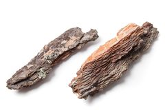 Pieces of Pine Bark. Two pieces of pine bark isolated on white stock image