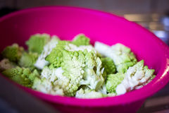 Pieces of Romanesco broccoli in a Pink Vegetable Filter Bowl Stock Image