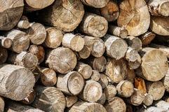 Pieces of round teak wood Royalty Free Stock Image