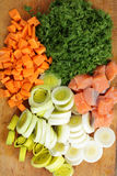 Pieces of salmon and vegetables Royalty Free Stock Photo