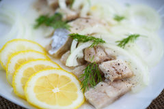 Pieces of salted herring with onions. And spices Royalty Free Stock Image