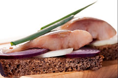 The pieces of salted herring on rye bread with slices of red onion Royalty Free Stock Images